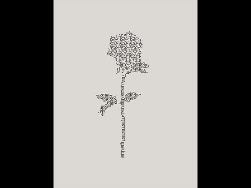 flower_