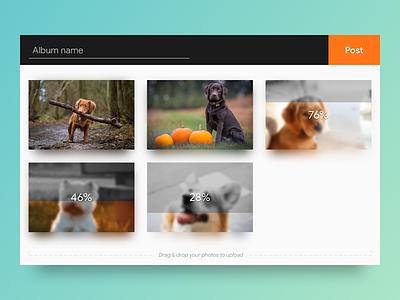 File Upload ux ui loader loading progress pet dogs photos files upload dailyui