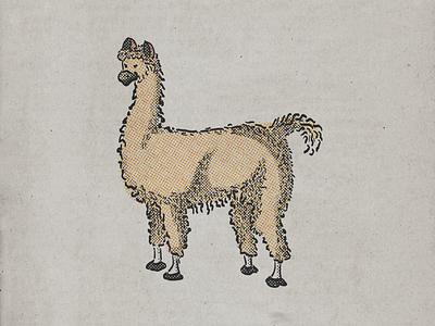 Лама lama animal illustration sketch