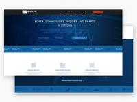 Evolve Markets Website