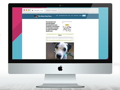 Foster Shelter Website illustration color ipad pro hope website design animals foster care charity