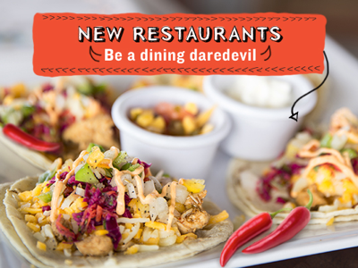 Dining Daredevil Email Advertisement culinary arts food spring email email blast advertisement design