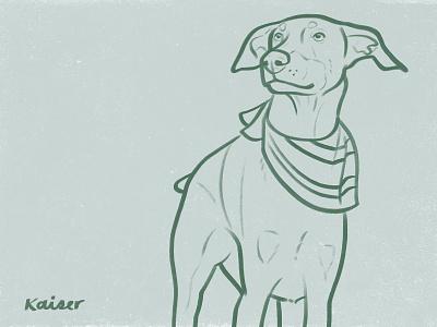 Kaiser doberman dog drawing sketch illustration