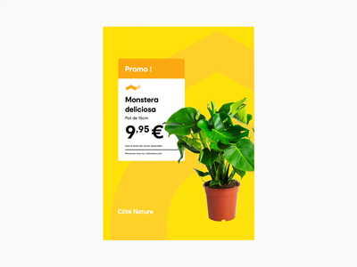 🌿 Côté Nature - Product Morphing 🌿 product web animation motion graphics morphing motion branding design illustration cote nature brand