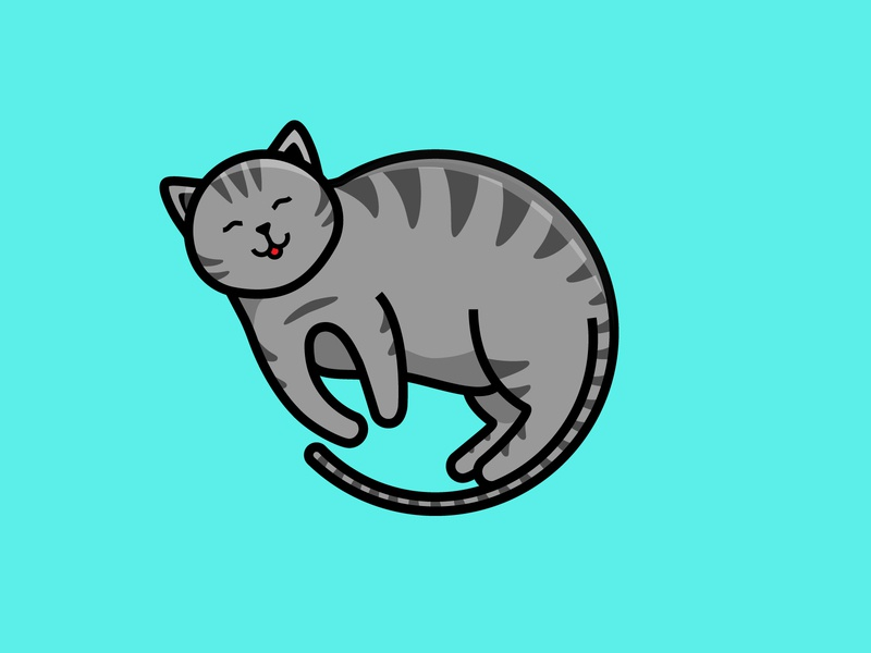 My Lil Chonk 🐱 animal cute chonk design flat design flat illustration illustration art cats cat flat illustration