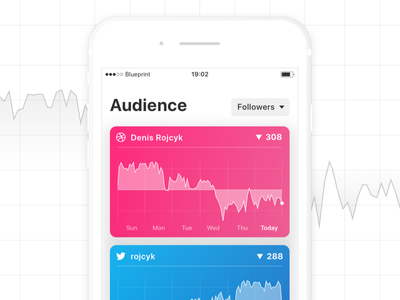 Followio Audience Screen initial mockup ios iphone analytics audience mobile ios11