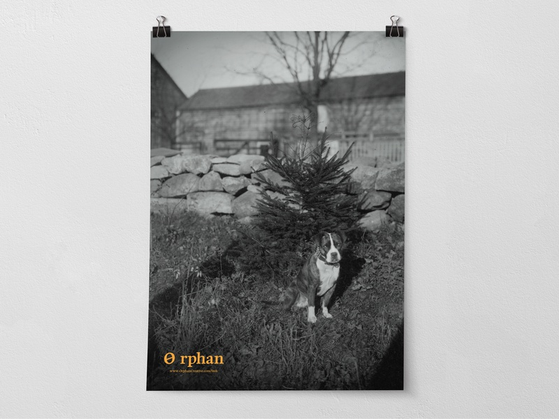 Lost and Found what puppy sad mockup help orange photo retro vintage black  white marketing campaign marketing poster huh creative found lost dog orphan
