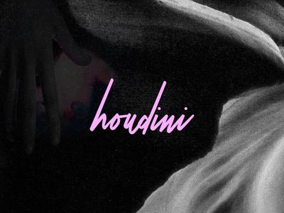 Houdini Studio digital agency logo brand