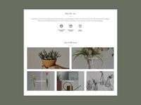 Lush Planter   Online Shopping casestudy responsive onlineshop overview app designer ecommerce product design onlineshopping ui uiux web design