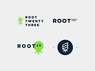 Root 23 Branding concept brand identity brand logo design