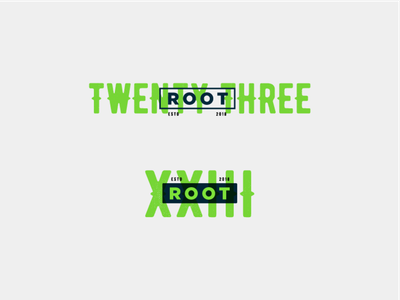 Root23 Branding wordmark roman numerals root 23 design logo brand identity idenity root23