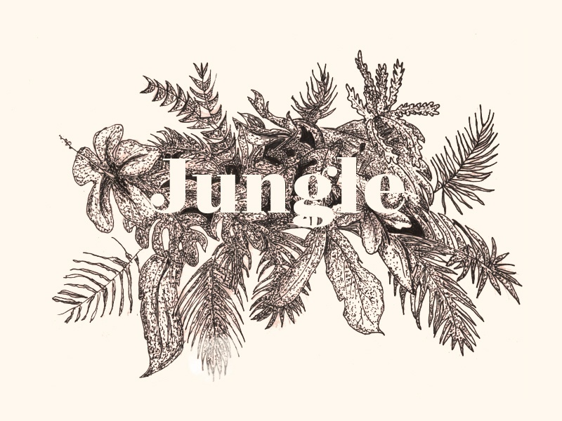 Jungle type free cool nice draw flowers jungle illustration