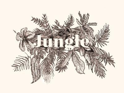 Jungle type free cool nice draw flowers jungle illustration