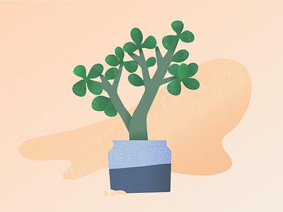 My friend Jade texture vector gradient plant jade succulent illustration