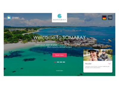 SomaBay   landing page