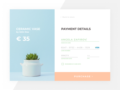 Credit card checkout pastel payment credit card check out minimal daily ui