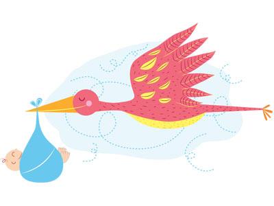 Stork vector illustration ilustracion baby stork