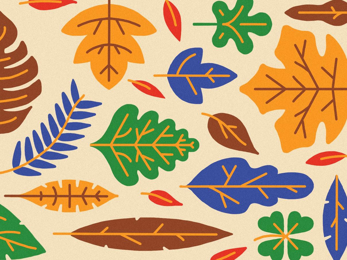 Autumn pattern doodle art leaf autumn leaves autumn illustration