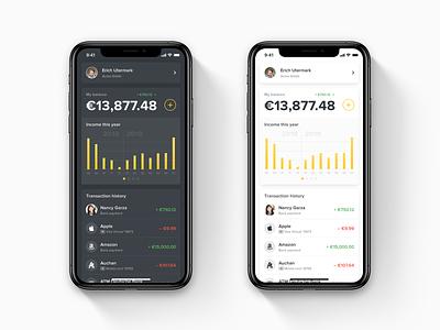 Mobile Wallet Homepage Concept light ui dark ui light theme dark theme ios app concept mobile app design ios bank app finance app fintech wallet