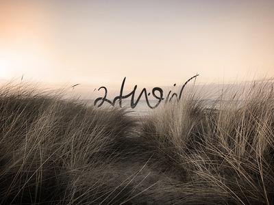 Art Noir @Dribbble photography identity brand branding logo lettering