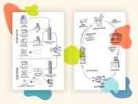 money flow diagrams