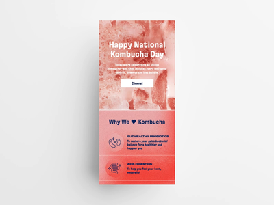 National Kombucha Day Email branding email marketing email design drink kombucha marketing newsletter campaign design icons email