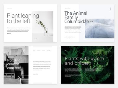 Helvetica alternatives typehound unsplash minimal layout alternative fonts google fonts helvetica