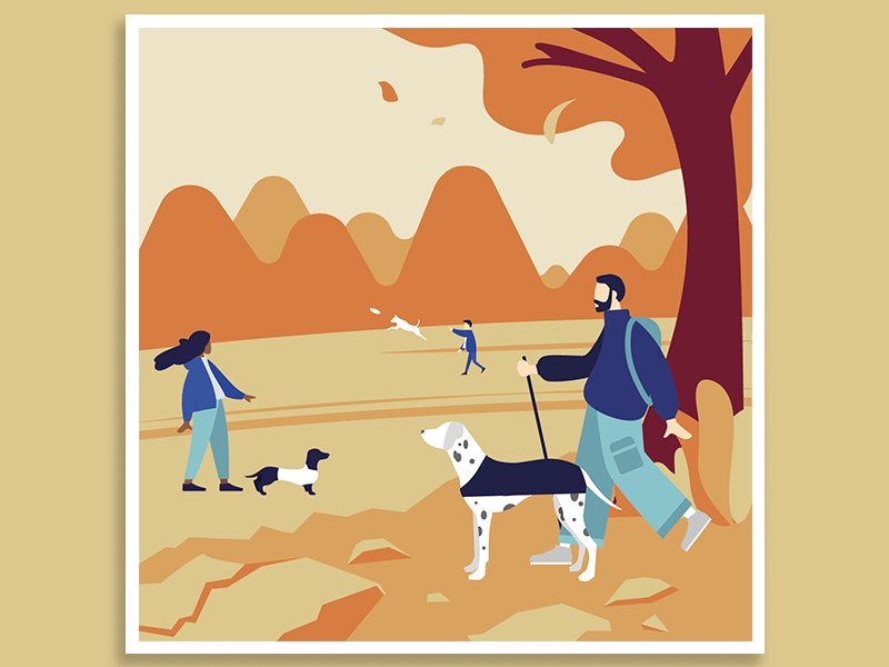 Adventures with dogs illustration 2 illustrator dogs illustration