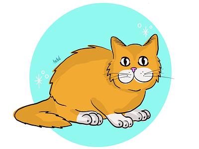 Cat gato cta
