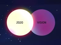 Vidzu 2020 Vision