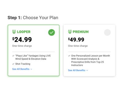 Checkout Flow plan payment checkout ui  ux design sketch ui