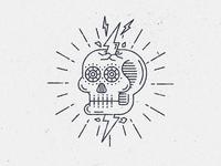 South American skull