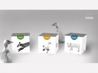 Packaging: Compassion For Animals