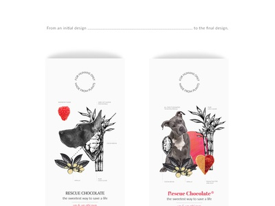 Rescue Chocolate - initial and final designs
