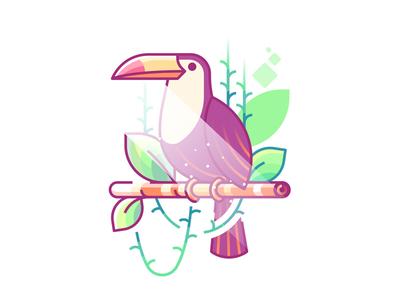 Toucan nature leaf tree jungle bird outline flat illustration toucan
