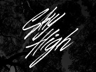 Sky High brush motivation inspiration calligraphy brush pen lettering