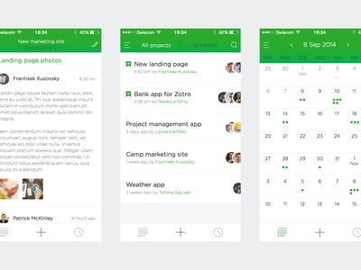 Project management app [wip] iphone app mobile ios basecamp clean flat management user ui