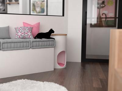 Felius Cat Cafe Cat Area Couch
