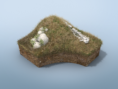 Dino Dig Grass Environment grassland surface microsoft app interactive excavation bones dinosaur environment 3d