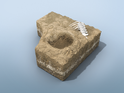 Dino Dig Crater Environment crater surface microsoft app interactive excavation bones dinosaur environment 3d