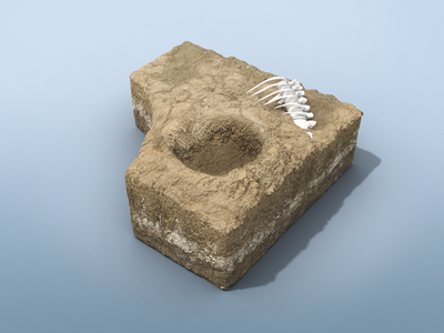 Dino Dig Crater Environment