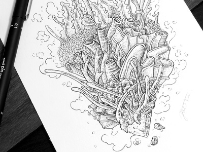 Corals underwater sea coral inking pen and ink artwork drawing illustration