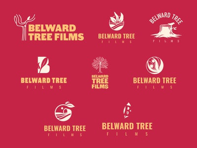 Belward Tree Films - Logo Concepts icon typography vector logo tree stump leaf tree farm gum tree film illustration brand design branding logo design rejected logo illustrator concept