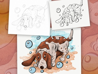 Bassie Marbles Dog pet animal art animal illustration dog illustration illustrator ipadpro charachter design concept digital painting childrens book illustration children book illustration