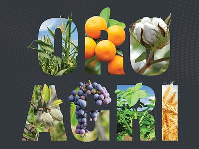 Crop Letters food grow photoshop wheat potato grape almond cotton orange corn crop typography agriculture ag letter graphic design