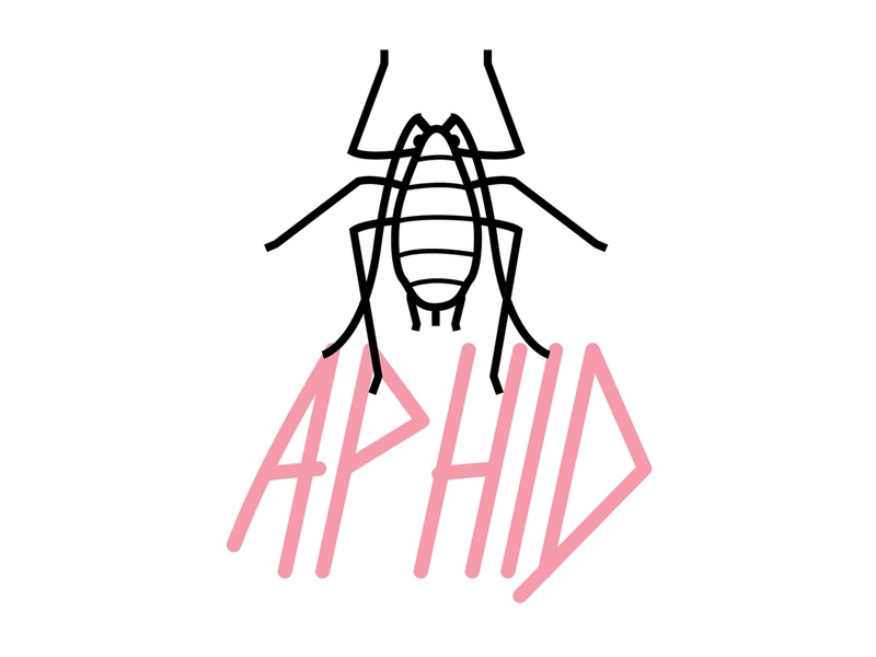 Aphid font design bad typeface harm pest aphid insect bug type illustration ag agriculture vector mark logo typography graphic design