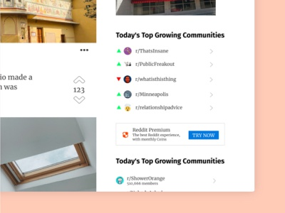 Reddit Redesign - Top Growing redesign minimalist minimal homepage flat affinity designer figma web design web uxui ui navigation modern desktop design concept brand design