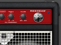 SWR® Redhead™ combo amplifier