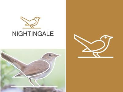 Nightingale Bird logo monoline branding bird design creative clever simple minimal logo