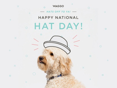 National Hat Day Illustration for Waggo
